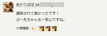 f:id:Ikegamiblog_tokyo:20180628181839j:plain