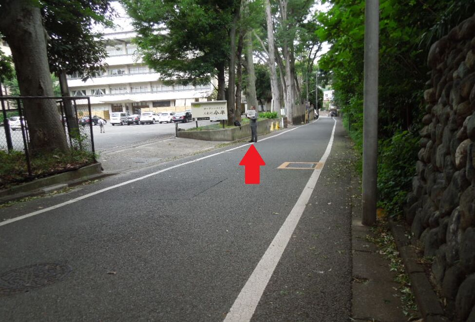 f:id:Ikegamiblog_tokyo:20180703032046j:plain