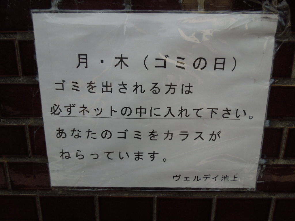 f:id:Ikegamiblog_tokyo:20180708232121j:plain