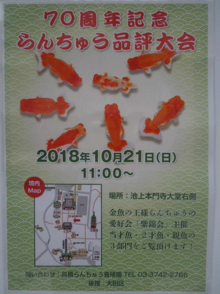 f:id:Ikegamiblog_tokyo:20181016211820j:plain