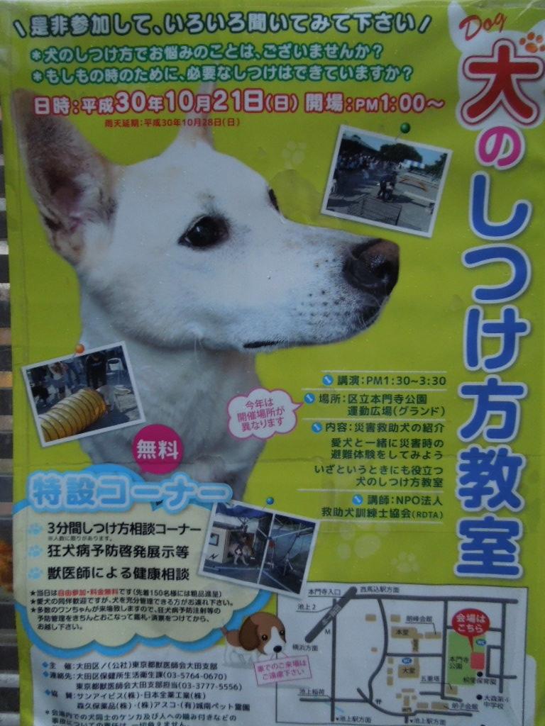 f:id:Ikegamiblog_tokyo:20181019172421j:plain