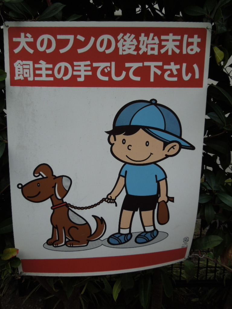 f:id:Ikegamiblog_tokyo:20181019174237j:plain