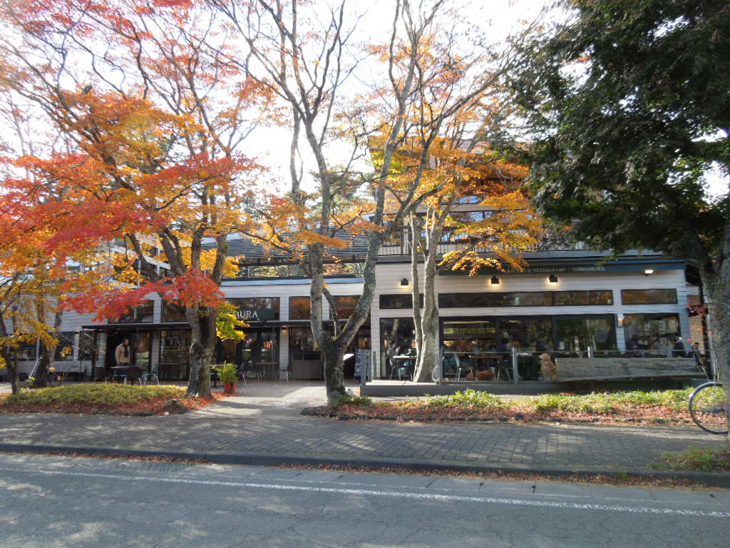 f:id:Ikegamiblog_tokyo:20181102122455j:plain