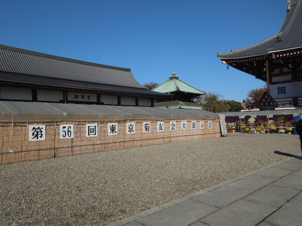 f:id:Ikegamiblog_tokyo:20181111202457j:plain