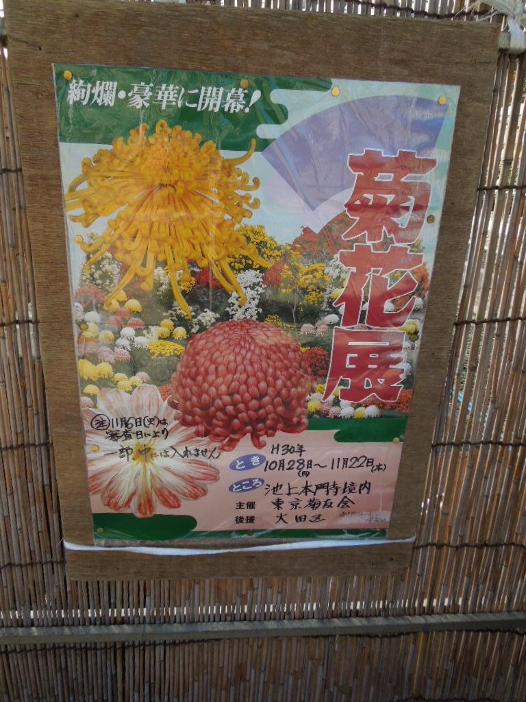 f:id:Ikegamiblog_tokyo:20181111202553j:plain