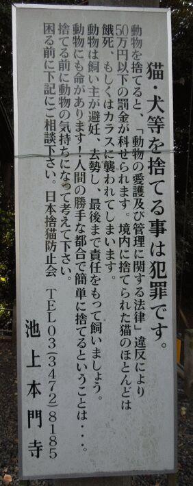 f:id:Ikegamiblog_tokyo:20181228160850j:plain