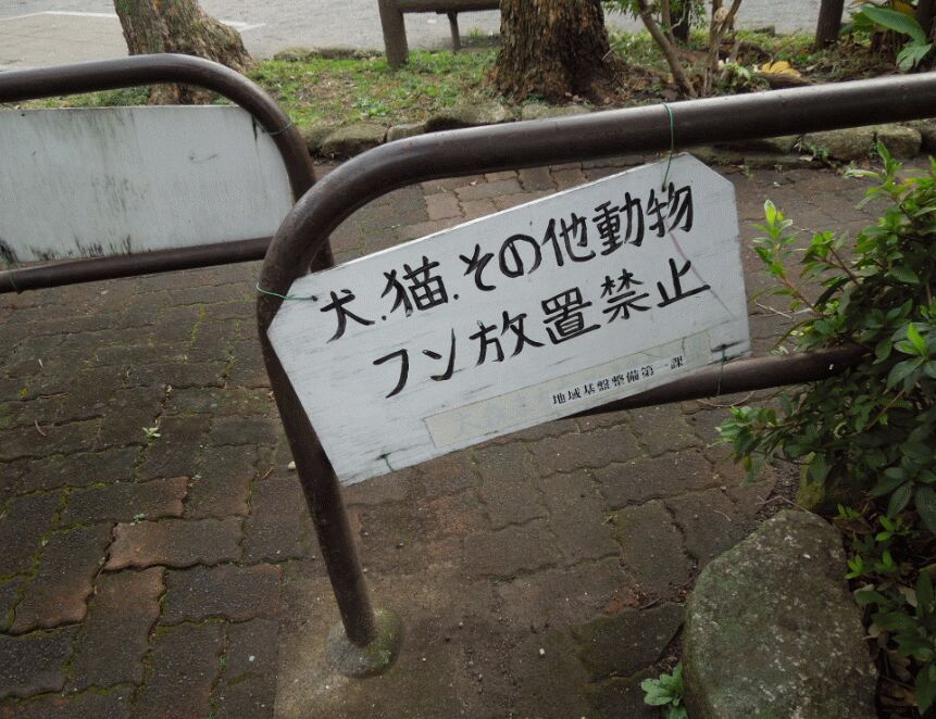 f:id:Ikegamiblog_tokyo:20190103203315j:plain