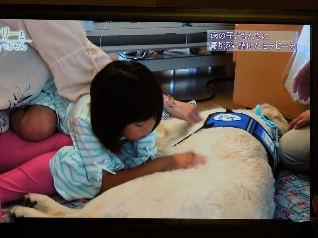 f:id:Ikegamiblog_tokyo:20190128211021j:plain