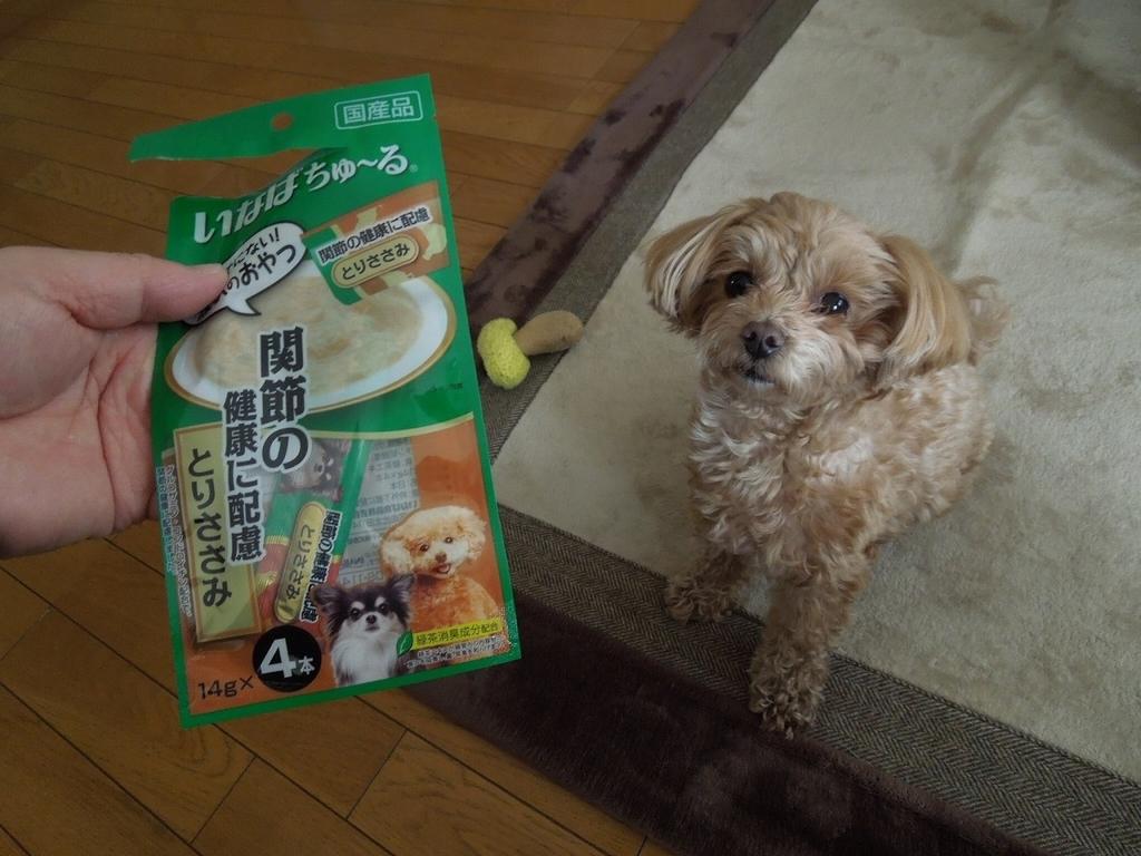 f:id:Ikegamiblog_tokyo:20190130230444j:plain