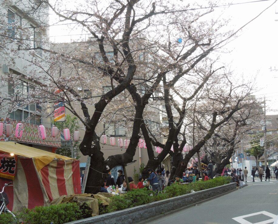 f:id:Ikegamiblog_tokyo:20190131154008j:plain