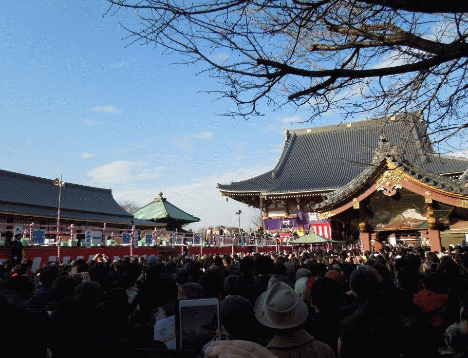 f:id:Ikegamiblog_tokyo:20190203214120j:plain