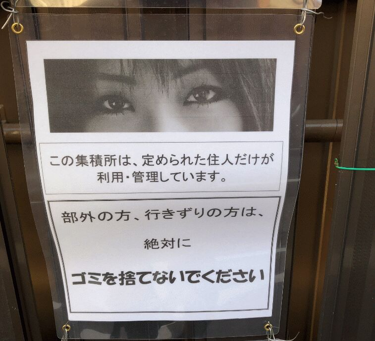 f:id:Ikegamiblog_tokyo:20190219214352j:plain