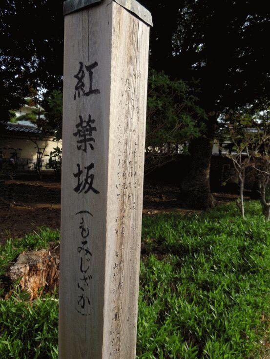 f:id:Ikegamiblog_tokyo:20190220094635j:plain