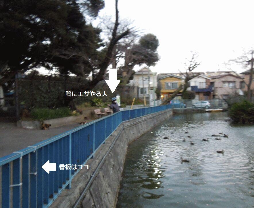 f:id:Ikegamiblog_tokyo:20190220164237j:plain