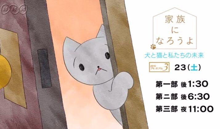 f:id:Ikegamiblog_tokyo:20190223234439j:plain