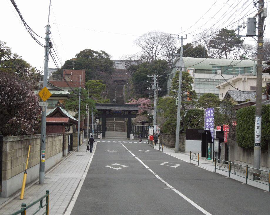 f:id:Ikegamiblog_tokyo:20190228145007j:plain