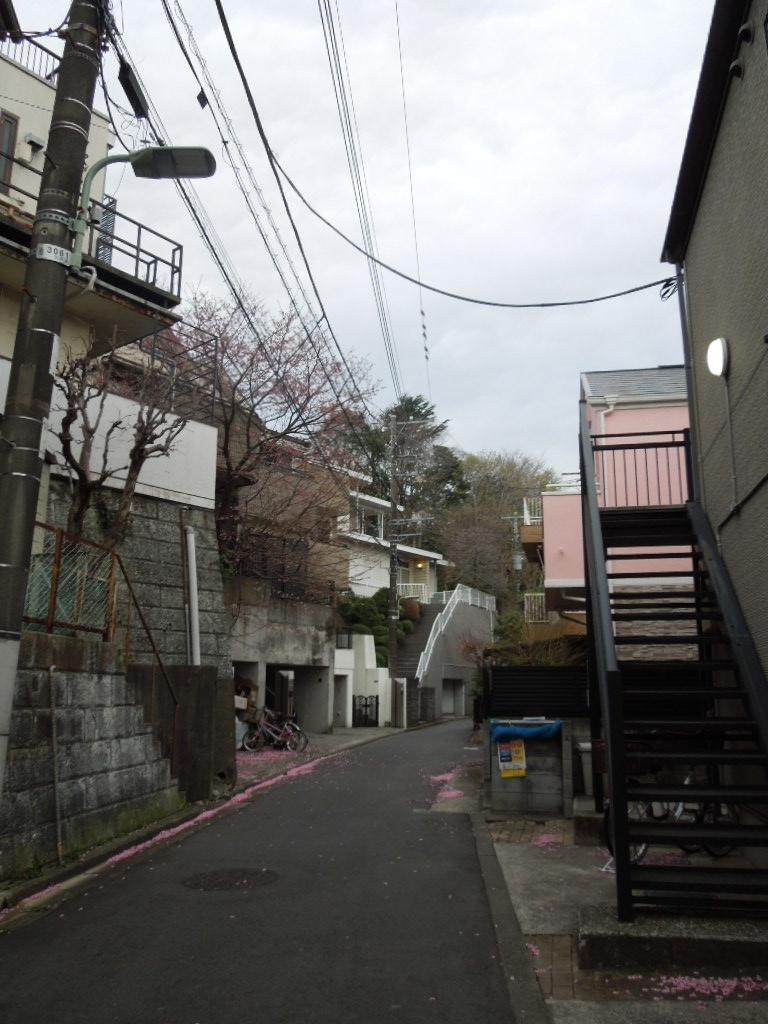 f:id:Ikegamiblog_tokyo:20190323220219j:plain