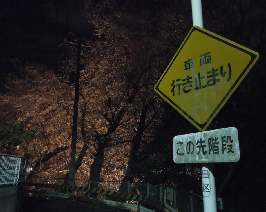 f:id:Ikegamiblog_tokyo:20190402164820j:plain