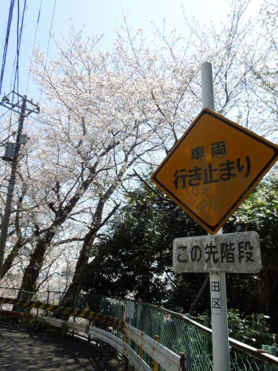 f:id:Ikegamiblog_tokyo:20190405145257j:plain