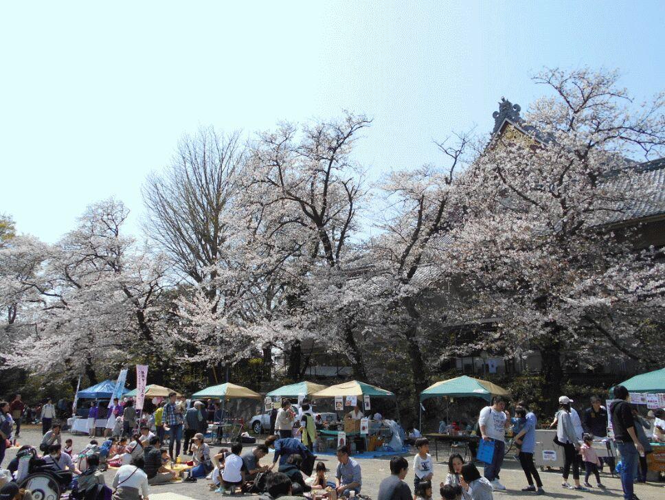 f:id:Ikegamiblog_tokyo:20190406201524j:plain