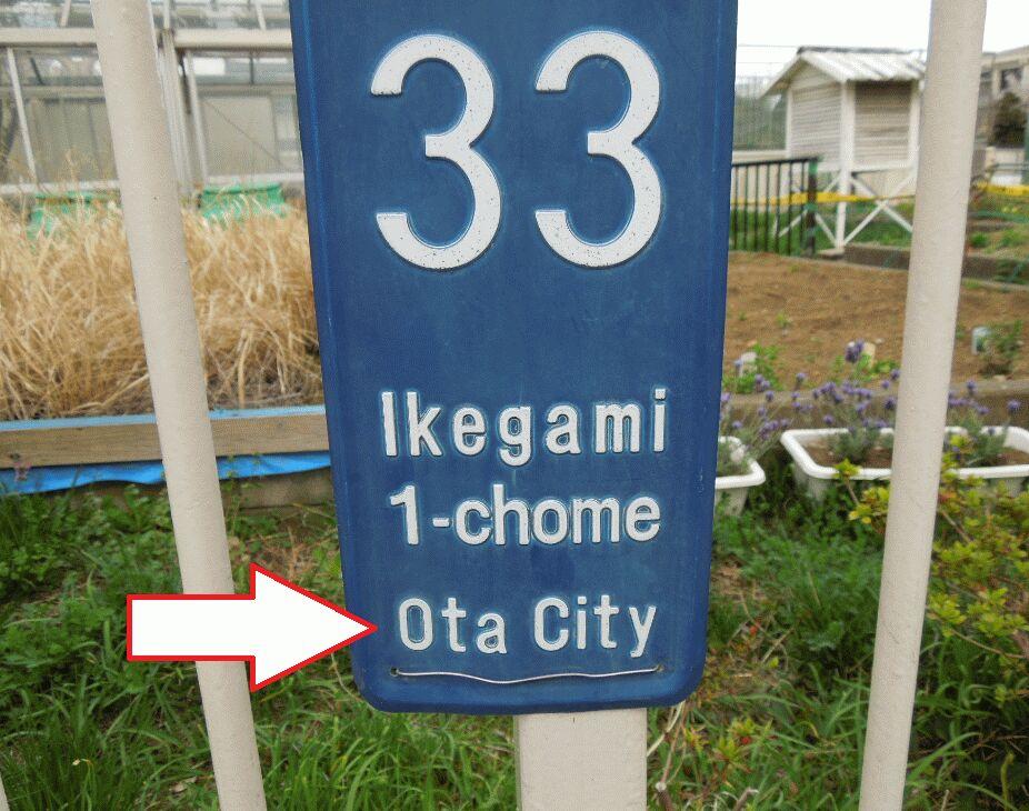 f:id:Ikegamiblog_tokyo:20190408210830j:plain