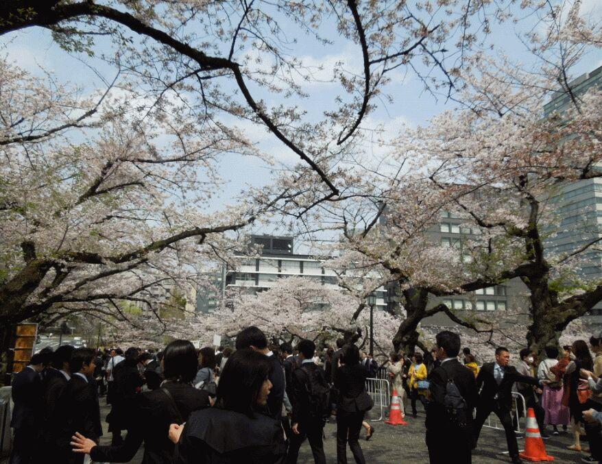 f:id:Ikegamiblog_tokyo:20190409201209j:plain
