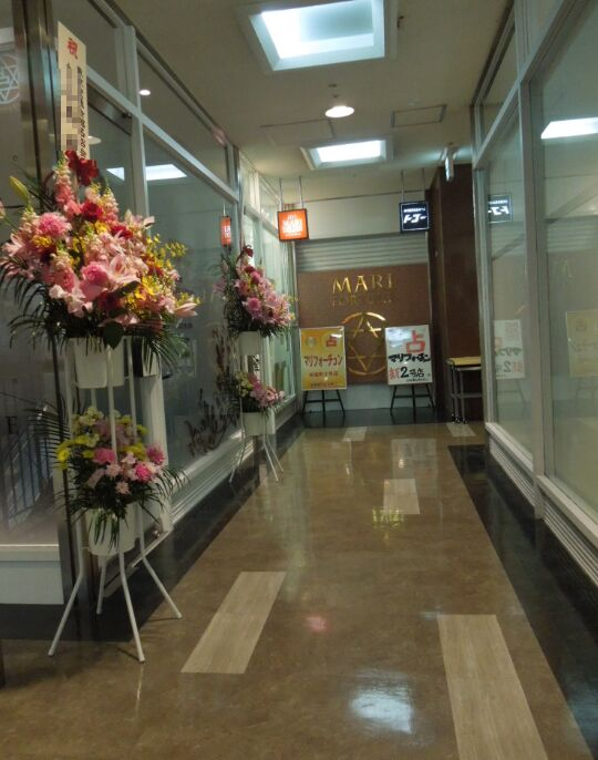 f:id:Ikegamiblog_tokyo:20190412223304j:plain