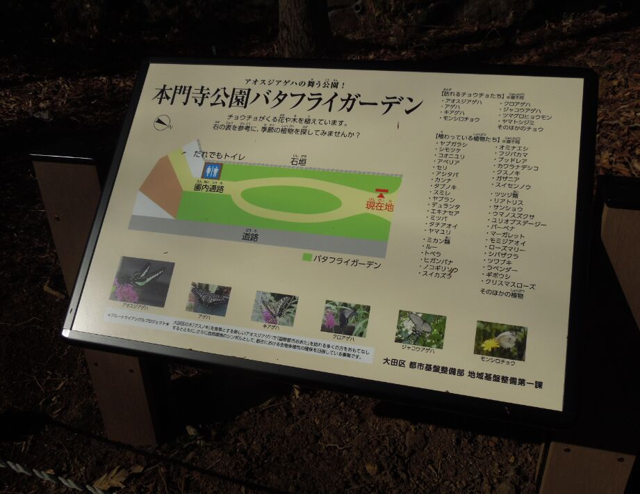 f:id:Ikegamiblog_tokyo:20190417211117j:plain