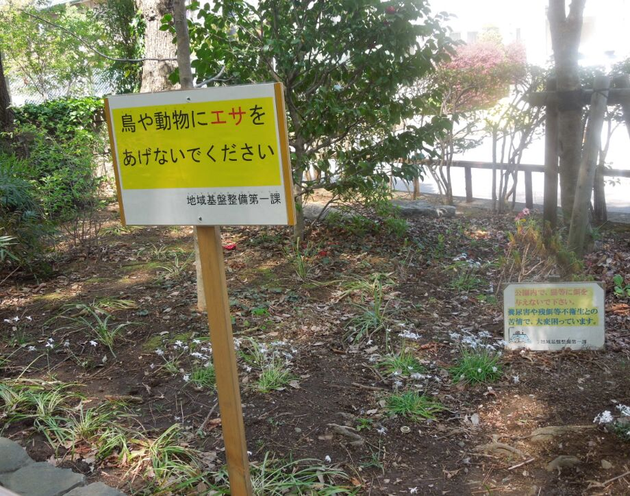 f:id:Ikegamiblog_tokyo:20190419235301j:plain