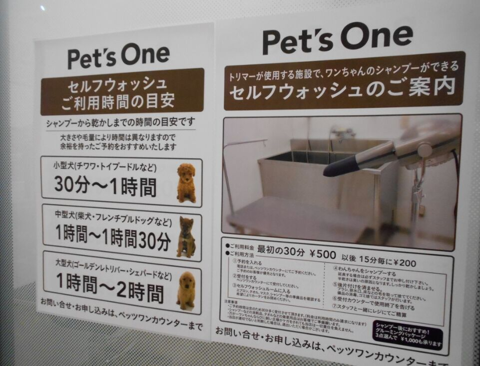 f:id:Ikegamiblog_tokyo:20190424234216j:plain