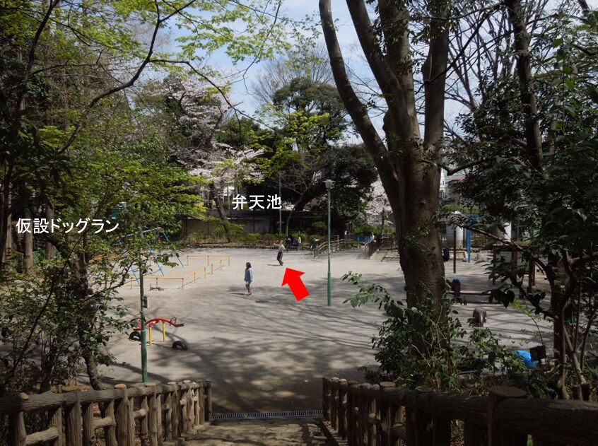 f:id:Ikegamiblog_tokyo:20190425091846j:plain