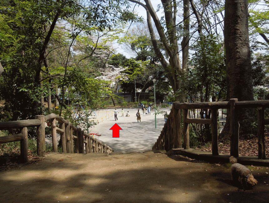 f:id:Ikegamiblog_tokyo:20190425095206j:plain