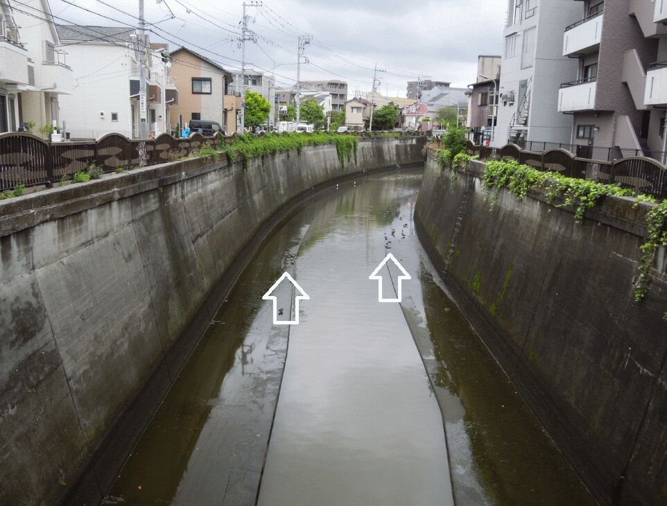 f:id:Ikegamiblog_tokyo:20190508123755j:plain