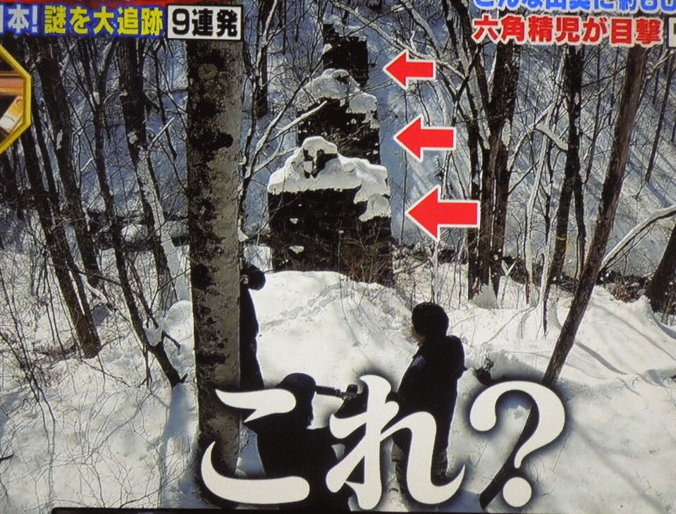 f:id:Ikegamiblog_tokyo:20190514220531j:plain