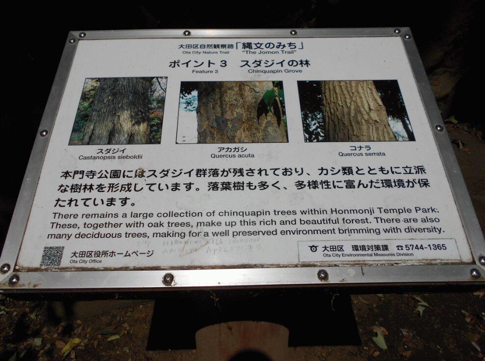 f:id:Ikegamiblog_tokyo:20190525204948j:plain