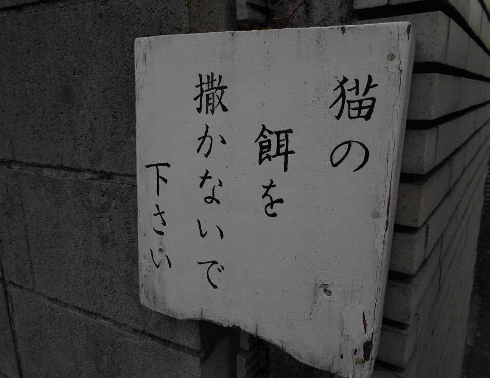 f:id:Ikegamiblog_tokyo:20190526124202j:plain