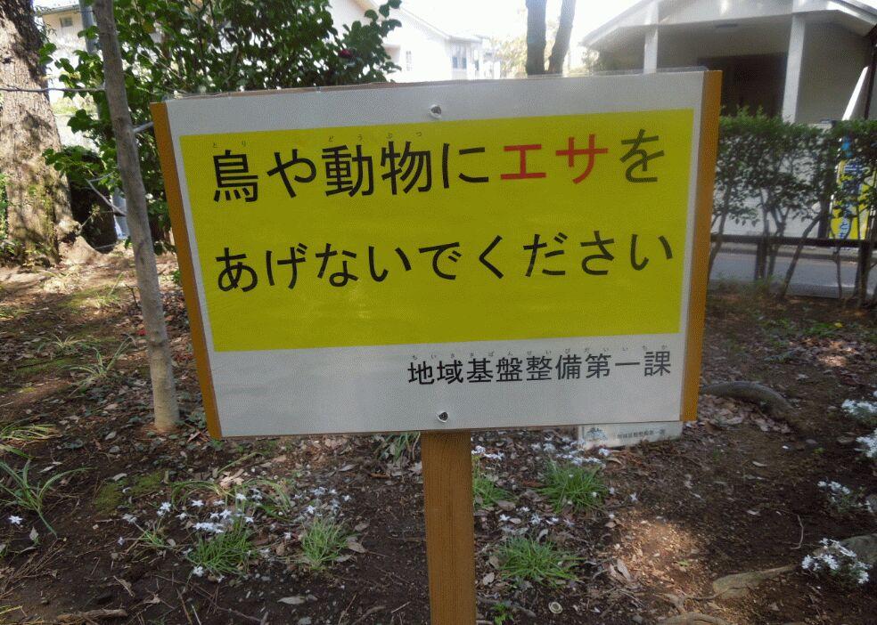 f:id:Ikegamiblog_tokyo:20190526130910j:plain