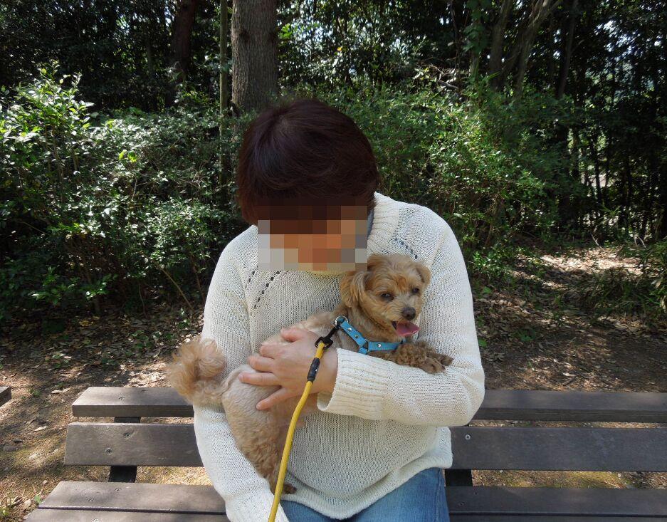 f:id:Ikegamiblog_tokyo:20190530191929j:plain