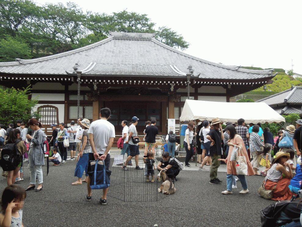 f:id:Ikegamiblog_tokyo:20190602175235j:plain