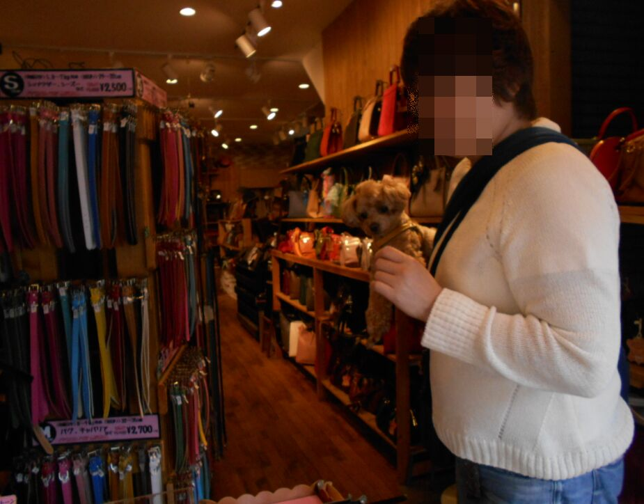 f:id:Ikegamiblog_tokyo:20190604230155j:plain