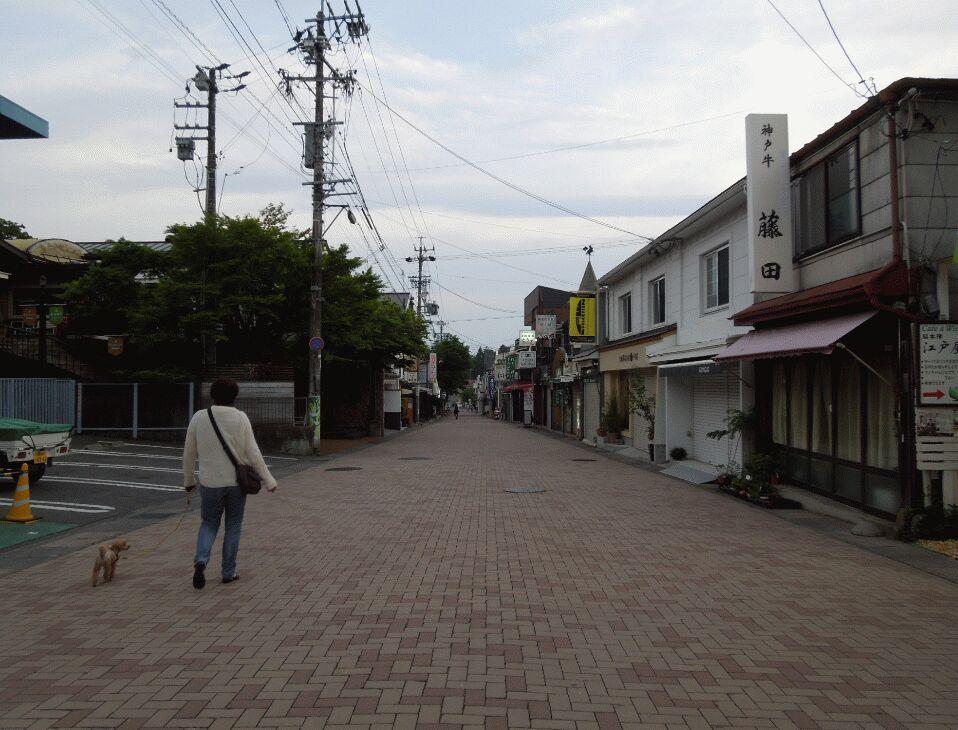 f:id:Ikegamiblog_tokyo:20190605194111j:plain