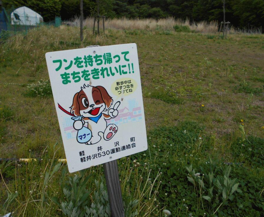 f:id:Ikegamiblog_tokyo:20190606114115j:plain