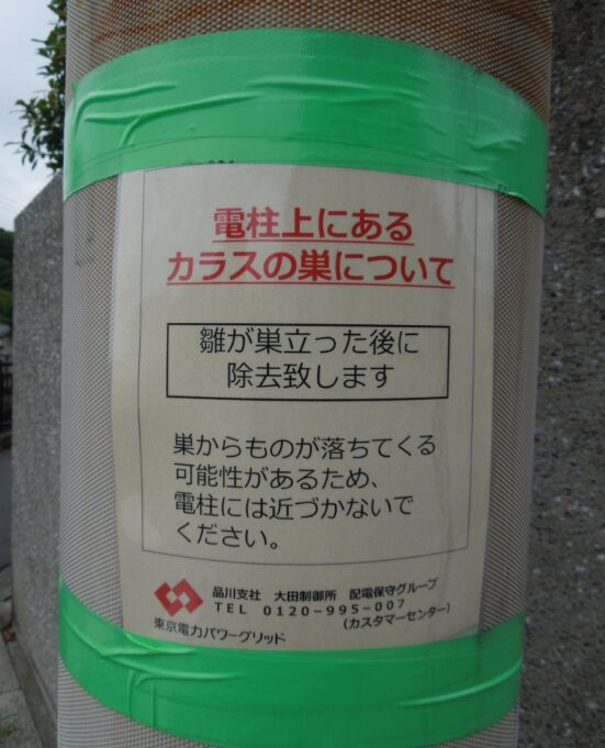f:id:Ikegamiblog_tokyo:20190623121027j:plain