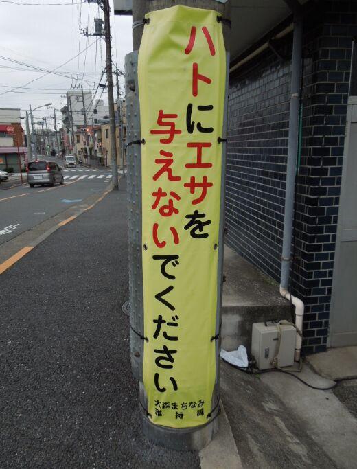 f:id:Ikegamiblog_tokyo:20190623143500j:plain