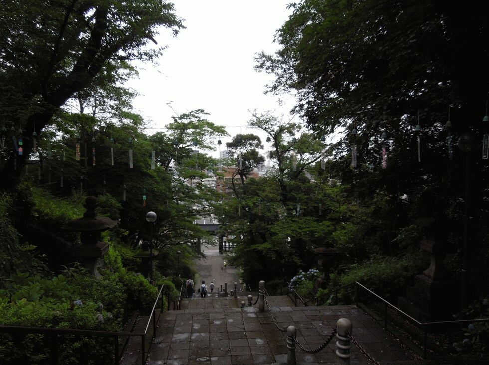 f:id:Ikegamiblog_tokyo:20190701214807j:plain
