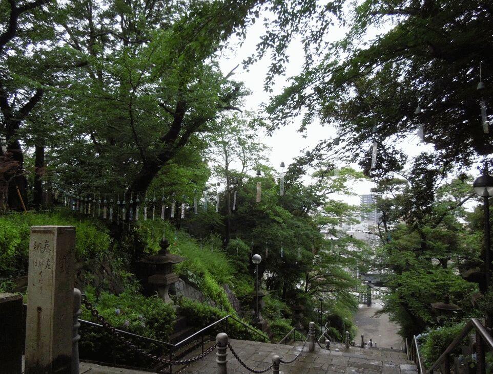f:id:Ikegamiblog_tokyo:20190701214914j:plain
