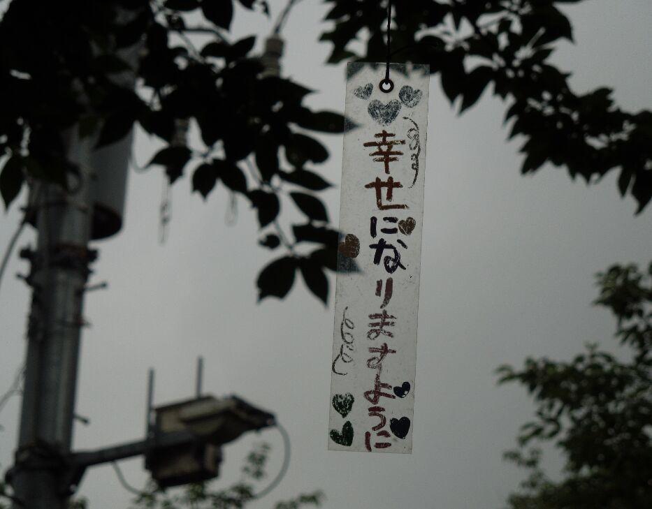 f:id:Ikegamiblog_tokyo:20190701215017j:plain