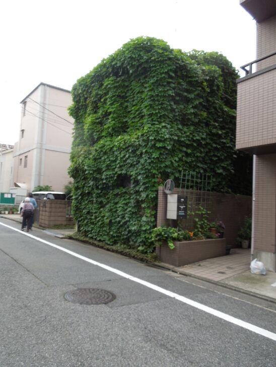 f:id:Ikegamiblog_tokyo:20190731131736j:plain