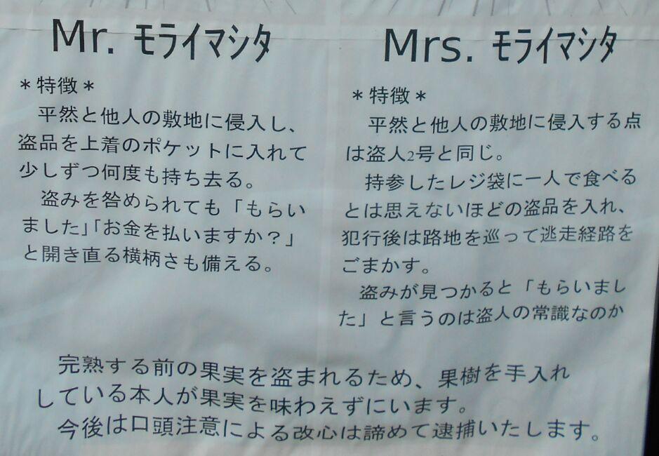f:id:Ikegamiblog_tokyo:20190805165418j:plain