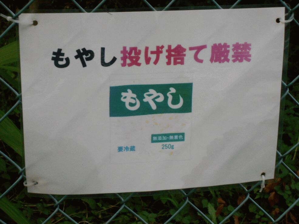 f:id:Ikegamiblog_tokyo:20190903133451j:plain